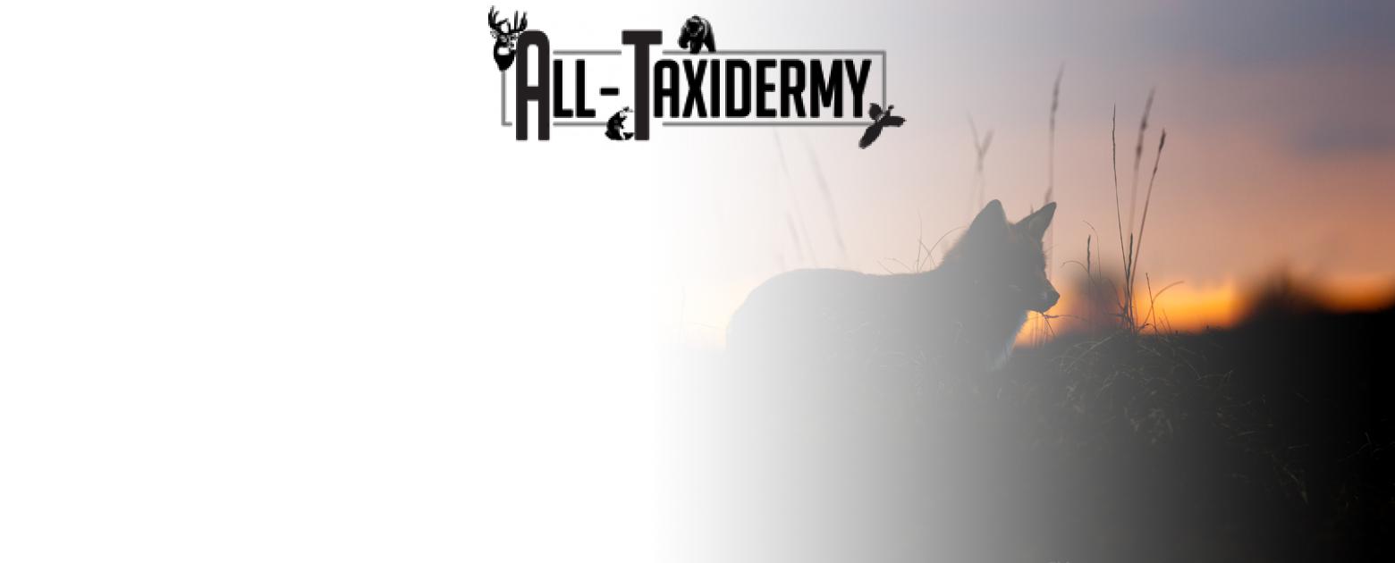 All-Taxidermy Hero