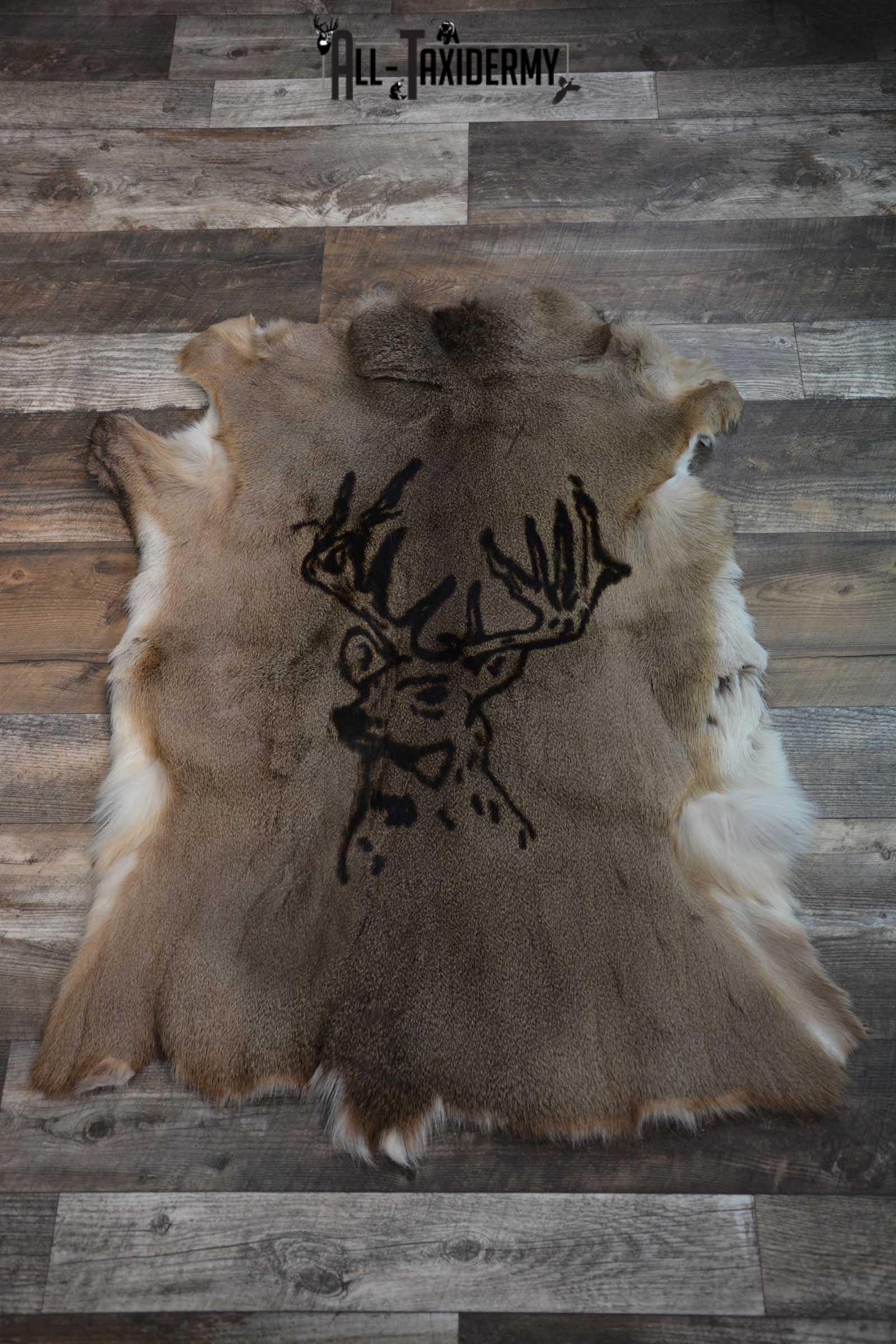 Whitetail Deer Hide with Buck Print Taxidermy SKU 1606
